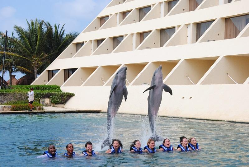 Nadar com os golfinhos no Delphinus Cancún