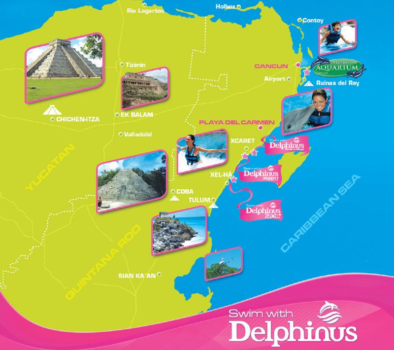 Nado com golfinhos no Delphinus - Mapa