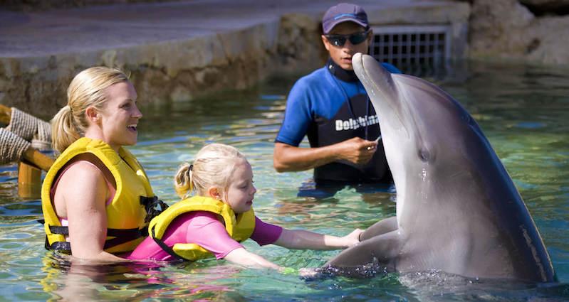 Família nadando com golfinho em Cancún