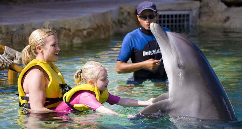 Dolphin Swim & Ride no Dolphinaris Park