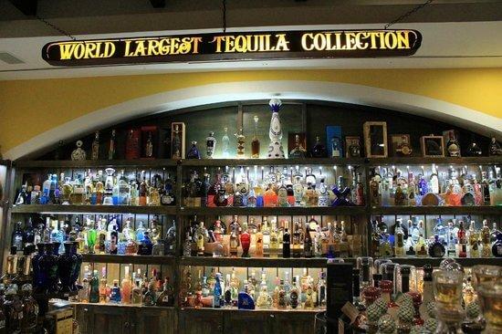 Museu Sensorial da Tequila em Cancún