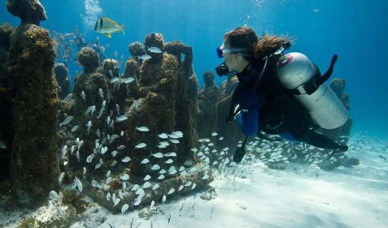 Dicas sobre o Museu Subaquático de Arte em Cancún