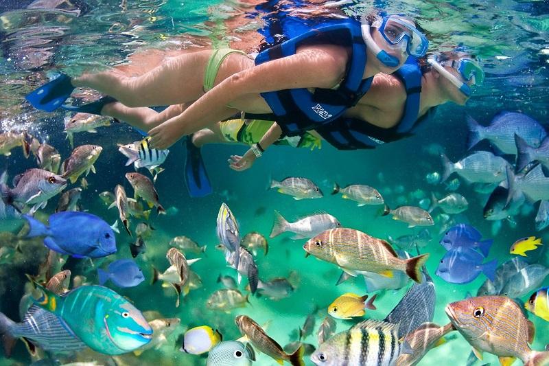 Mergulho de snorkel no parque Xcaret em Cancún