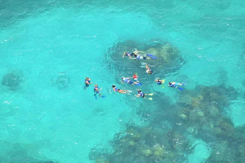 Mergulho em Los Cabos e todo o México