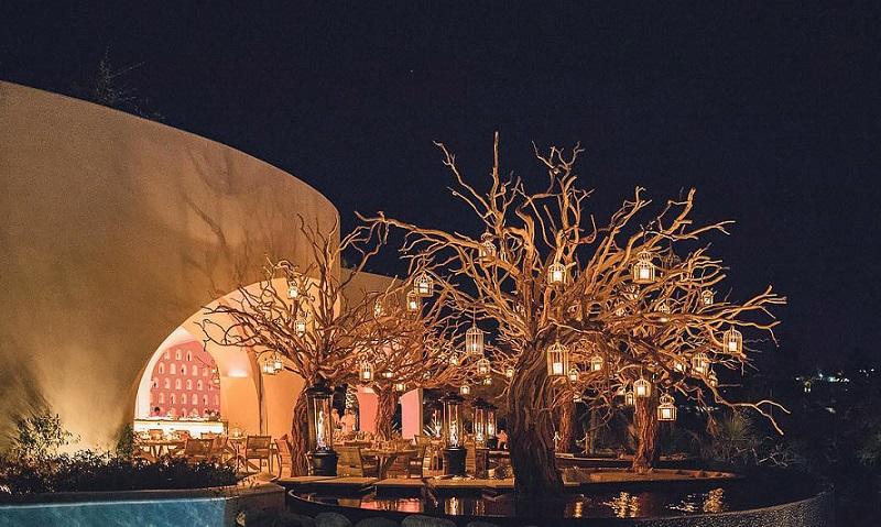 Restaurante Arbol em Los Cabos