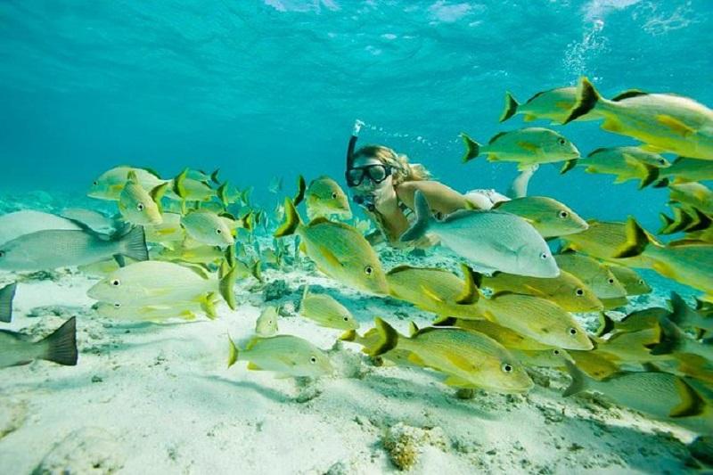 Snorkel na Playa Santa Maria em Los Cabos