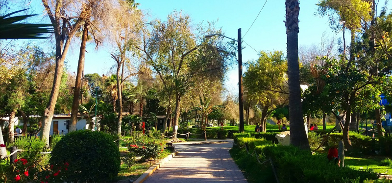 Passeio no Parque Morelos para lua de mel em Tijuana