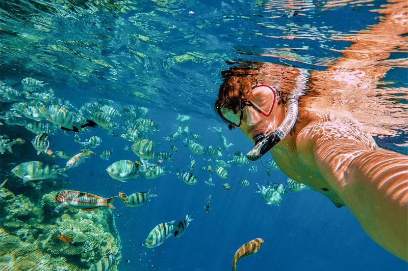 Mergulho em Los Cabos