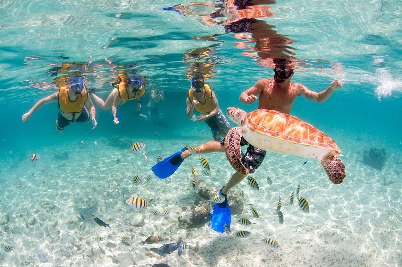 Mergulho de snorkel em Playa del Carmen